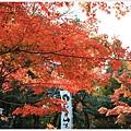 京都-一乘寺-曼殊院天滿宮-5.jpg