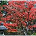 京都-一乘寺-曼殊院天滿宮-6.jpg