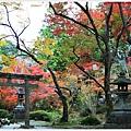 京都-一乘寺-曼殊院天滿宮-8.jpg