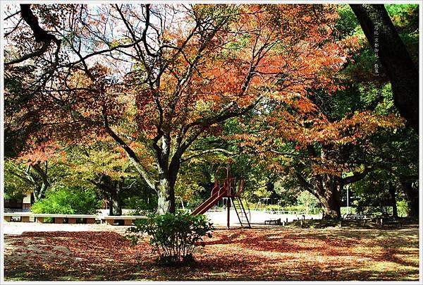 京都-京都御苑-8.jpg