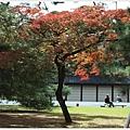 京都-京都御苑-9.jpg