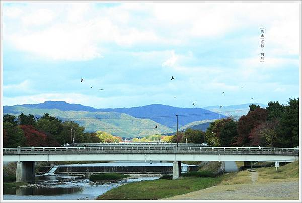 京都-鴨川三角洲-2.jpg