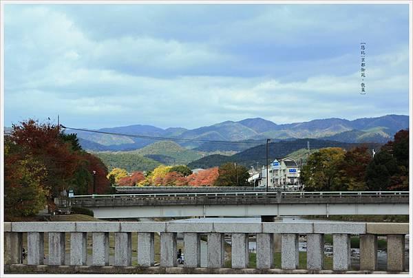 京都-鴨川三角洲-4.jpg