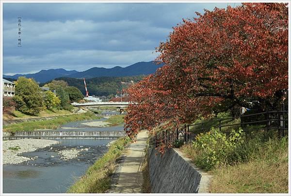京都-鴨川三角洲-6.jpg