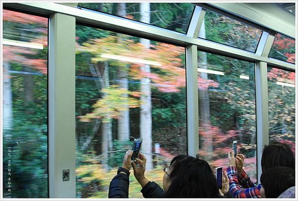 賞楓列車-車內-1.jpg