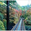 賞楓列車-車尾-1.jpg