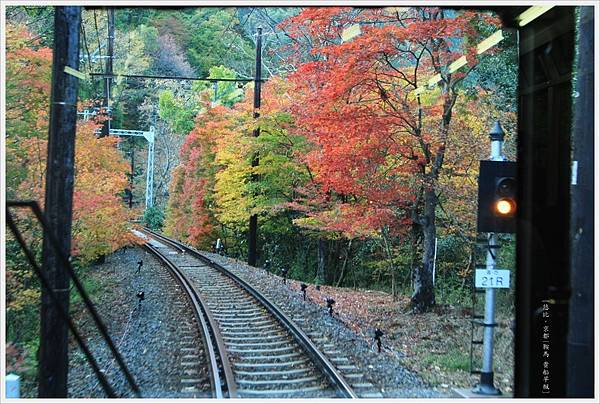 賞楓列車-車尾-3.jpg