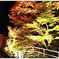 賞楓列車-貴船口-2.jpg