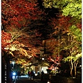賞楓列車-貴船神社-7.jpg
