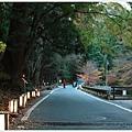賞楓列車-貴船神社往奧宮沿路-8.jpg