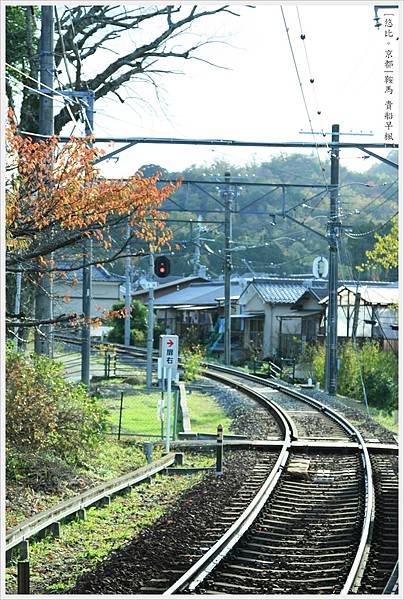 賞楓列車-市原站-2
