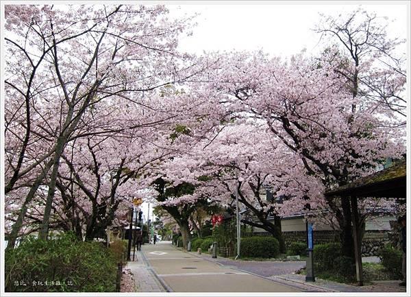 宇治-川邊街道-4.JPG