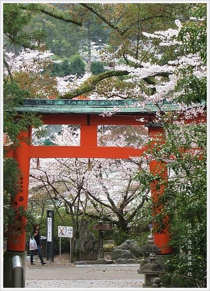 宇治-宇治神社-1.JPG