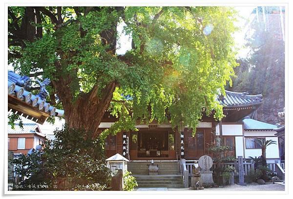 小豆島-西光寺-2.JPG