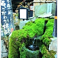 水基巡商店街-酒杜之水.JPG