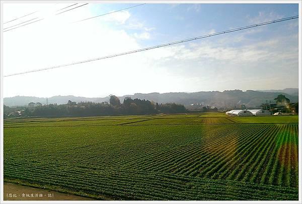 由布院之森-沿路風景-2.jpg