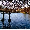 由布院-金麟湖-18.jpg