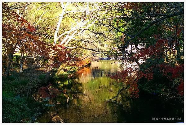 由布院-金麟湖-旁-1.jpg