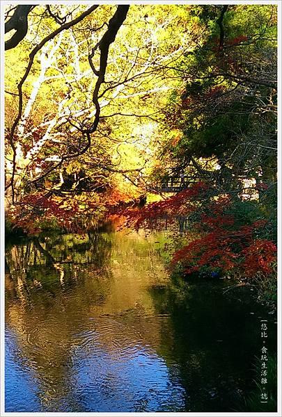 由布院-金麟湖-旁-2.jpg