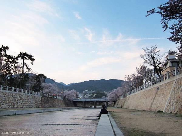 蘆屋-蘆屋川旁櫻花-11.JPG