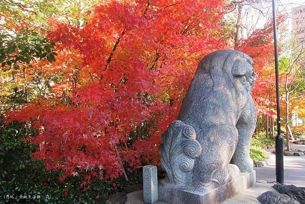 晴明神社-柏犬與楓-1.JPG