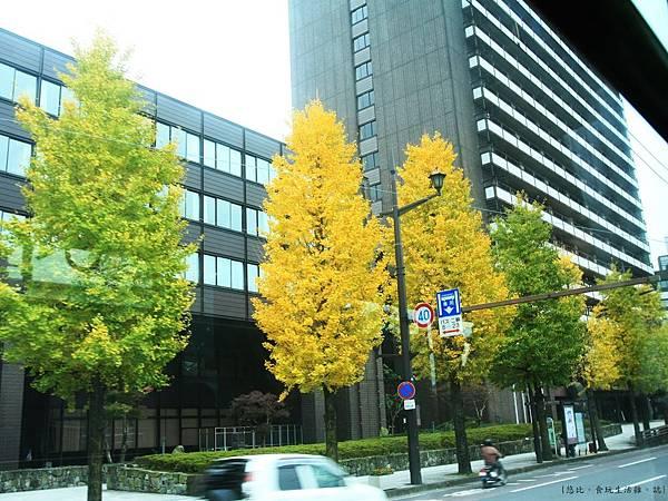 熊本-路面電車外風光-1.JPG