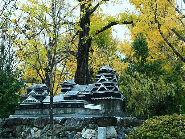熊本-縣廳銀杏並木-小熊本城.JPG