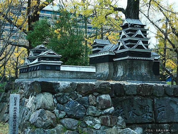熊本-縣廳銀杏並木-小熊本城-1.JPG