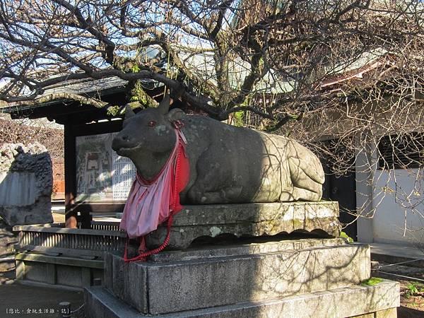 北野天滿宮-牛雕像3.JPG