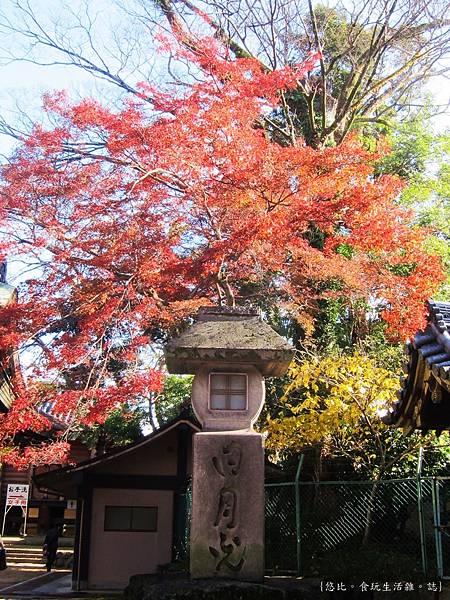 北野天滿宮-楓紅-1.JPG