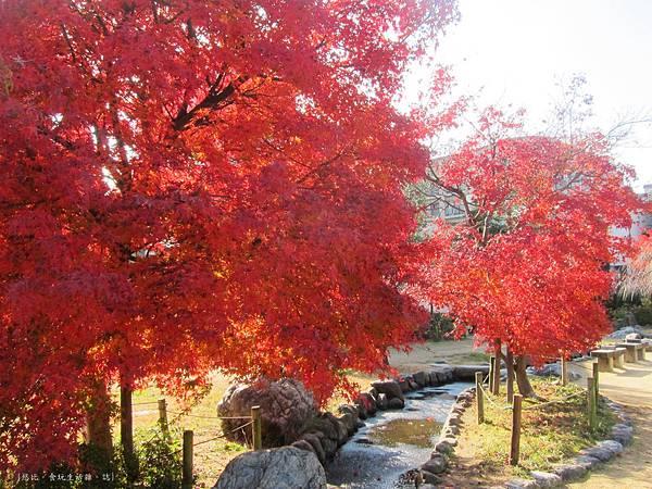 鳥岩樓-公園紅葉-2.JPG
