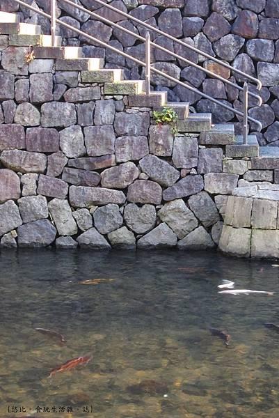 眼鏡橋-愛心-1.JPG