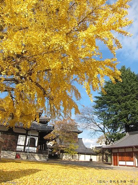 西本願寺-5.JPG