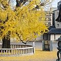 西本願寺-阿彌陀堂門前石燈籠-2.JPG