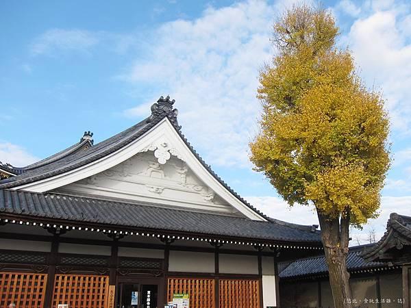 東本願寺-銀杏-1.JPG