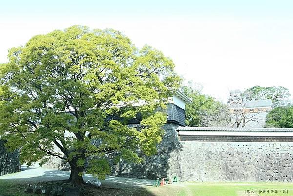 熊本城-馬具櫓-2.JPG