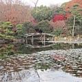 涉成園-印月池侵雪橋-5.JPG
