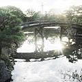 涉成園-印月池侵雪橋京都塔-3.JPG