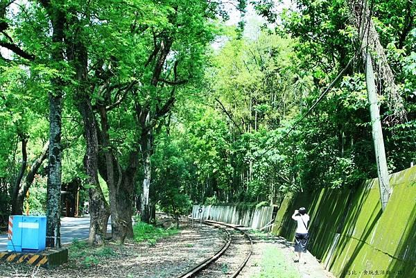 集集綠色隧道-6.JPG