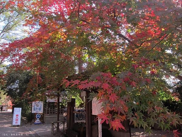 下鴨神社-入口-1.JPG