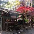 下鴨神社-手水舍-1.JPG