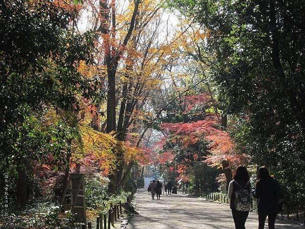 下鴨神社-表參道-7.JPG