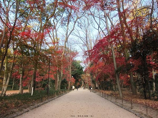 下鴨神社-表參道-14.JPG