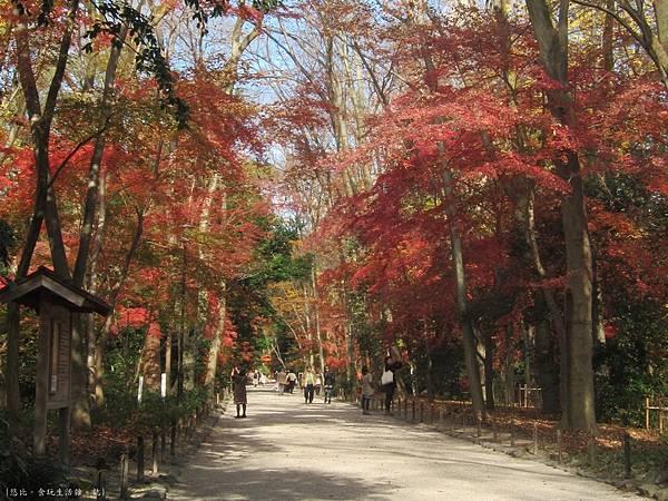 下鴨神社-表參道-21.JPG