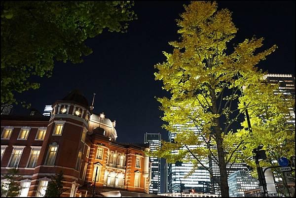 東京車站-銀杏-1.JPG