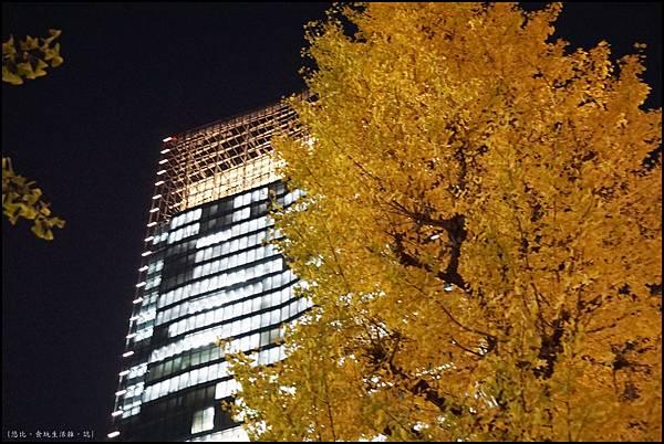 東京車站-銀杏-2.JPG