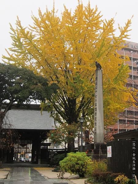 櫛田神社-1.JPG