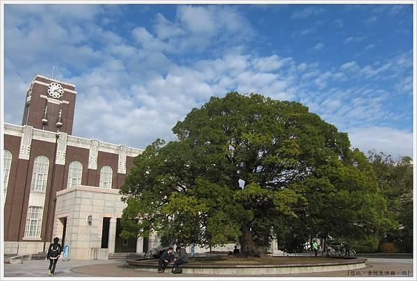 京都大學-鐘樓前廣場樟樹-1.JPG