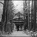 京都大學-吉田寮-中寮-9.JPG