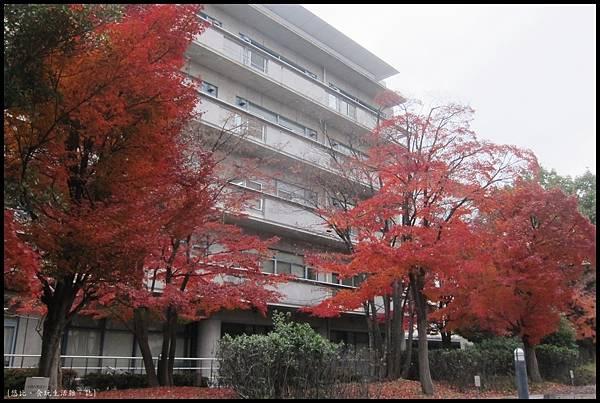 京都大學-校園-4.JPG